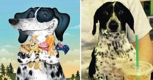 12 Pets Illustrated According to their Personalities That Will Draw You Closer to Them
