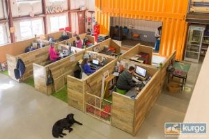 Check Out The Most Dog-Friendly Workplace That You Just Can't Miss
