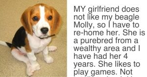 Girlfriend Demands 'Either The Dog Goes Or I Go', The Boyfriends Response Is Legendary