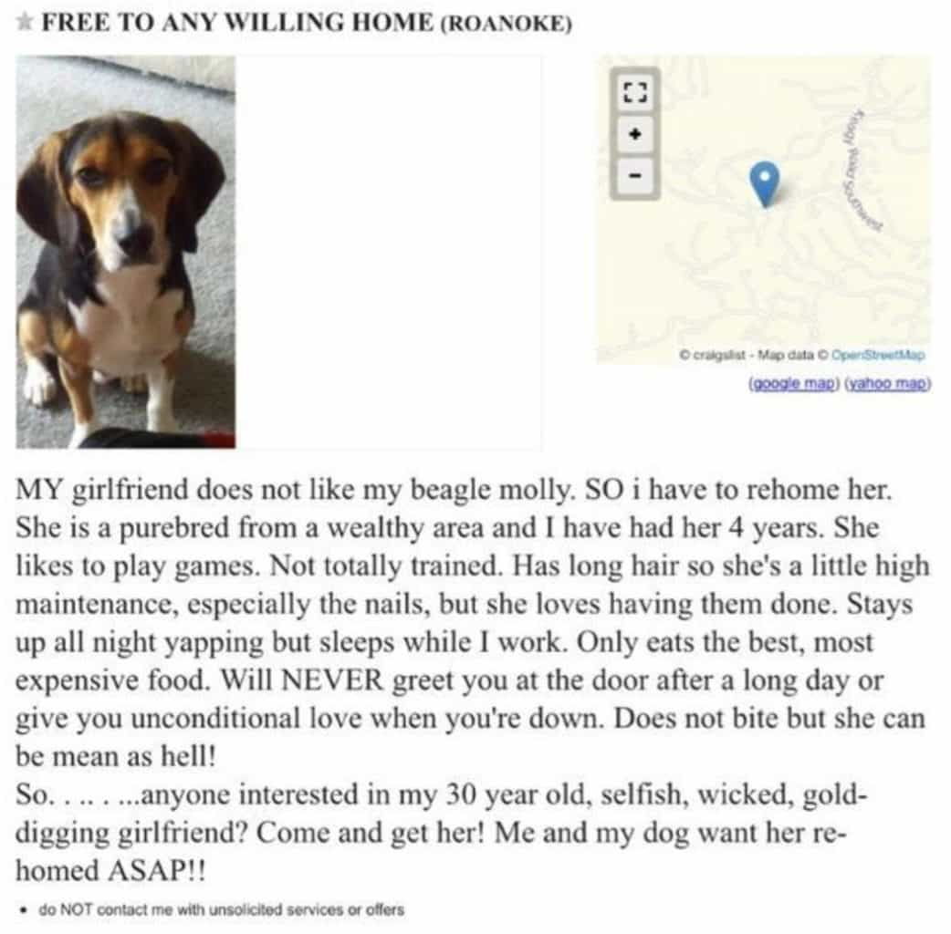 """Image result for Girlfriend Gave Her Partner An Ultimatum, Demands Either """"The Dog Goes"""" Or """"She Goes"""""""