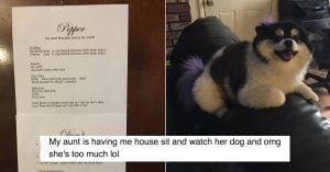 Internet Can't Stop Laughin Over This Woman's List Of Rules For Her Dog-Sitting Nephew