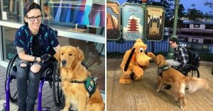 This Service Dog Received An Amazing Reward For All His Hard Work And His Excitement Is Adorabl