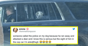 This Dog Was Arrested By The Police For Attacking A Deer And The Details Are Too Hilarious