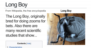 10+ Fake Wikipedia Pages About Dog Breeds That Are Definitely Better Than The Original
